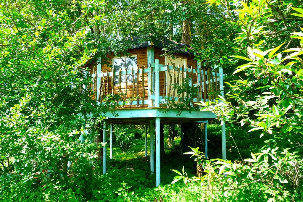 1 Tree house Tinker Treehouse