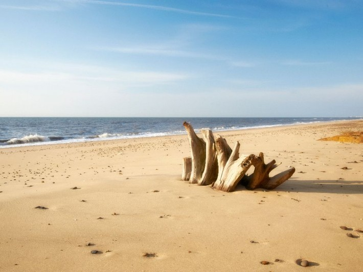 Covehithe By Nick Read